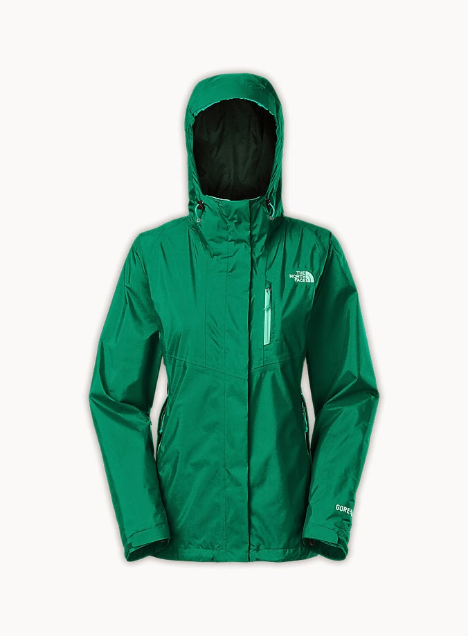 Jaket The North Face Women's MOUNTAIN LIGHT GORETEX (C767)