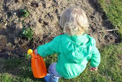 Garten-ein wichtiger Erlebnis-und Lernort für Kinder (klick)