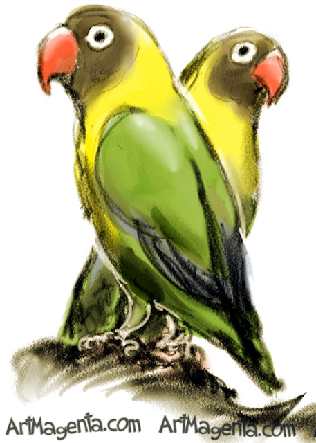 Yellow-collared Lovebird  sketch painting. Bird art drawing by illustrator Artmagenta.