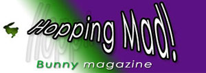 'Hopping Mad!' Bunny Magazine