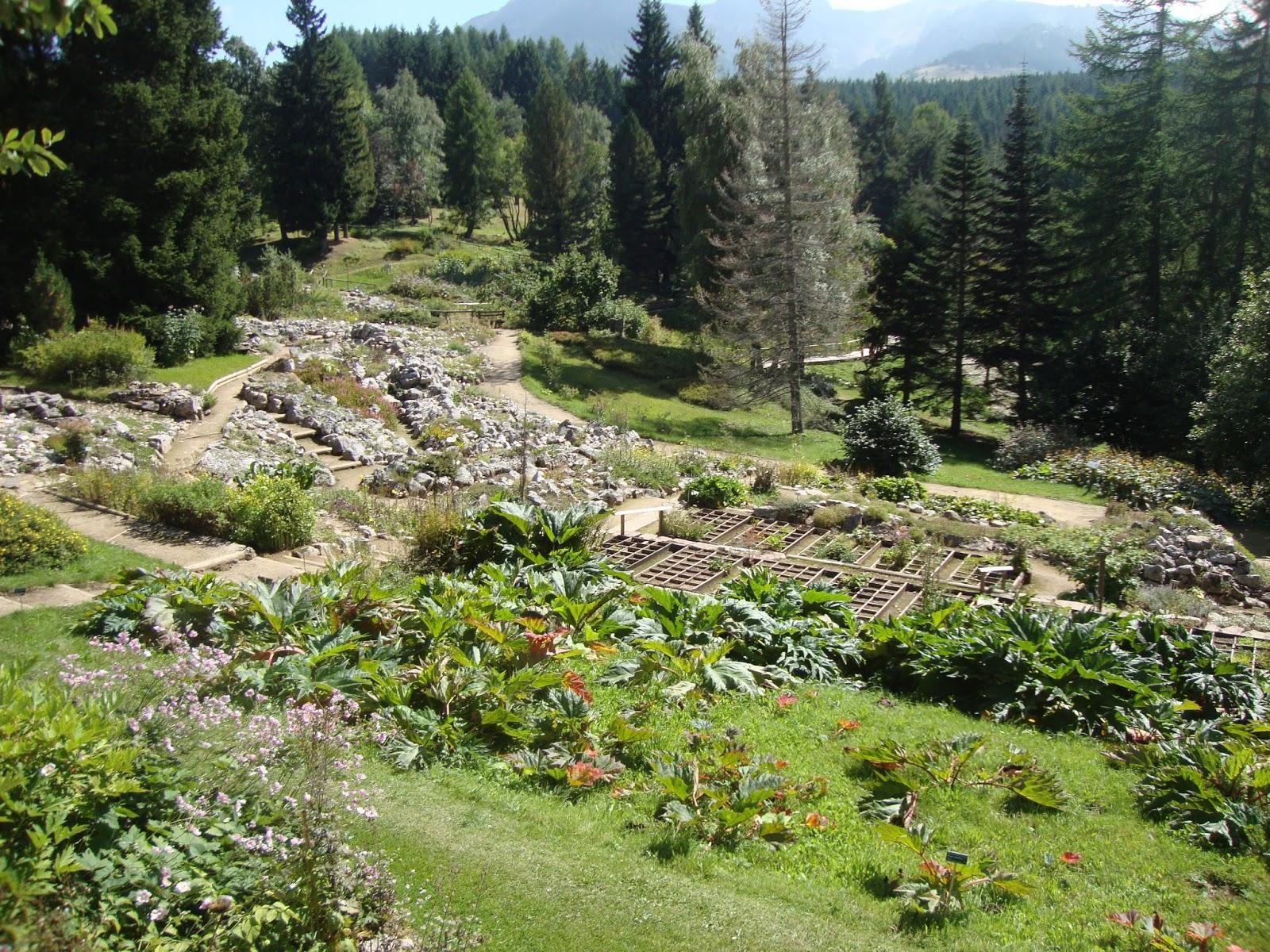 Foto diario di una giardiniera curiosa giardino botanico for Immagini giardiniere