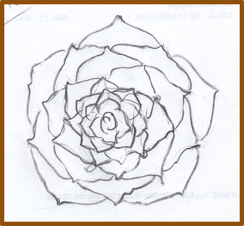 Weekly : Doodles and tuts: How to draw a rose: Additional ...