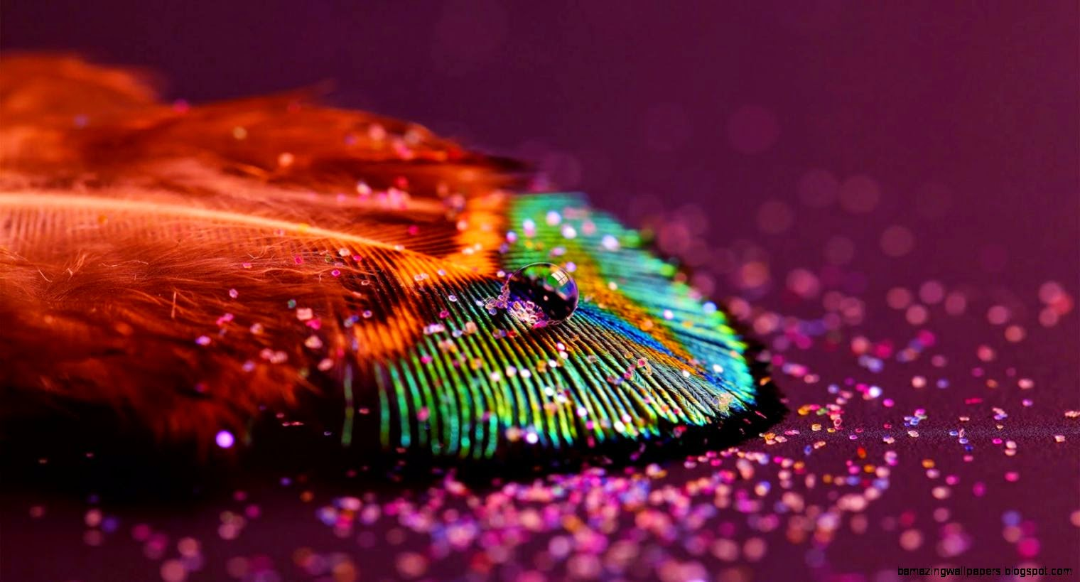 Abstract Photography Wallpaper 2014 Free 15 HD Wallpapers