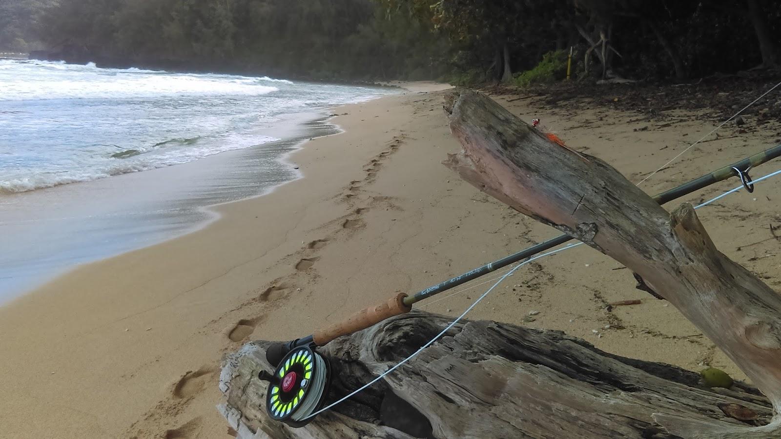 The endless hatch a dave gourley fly fishing blog kauai for Fly fishing kauai