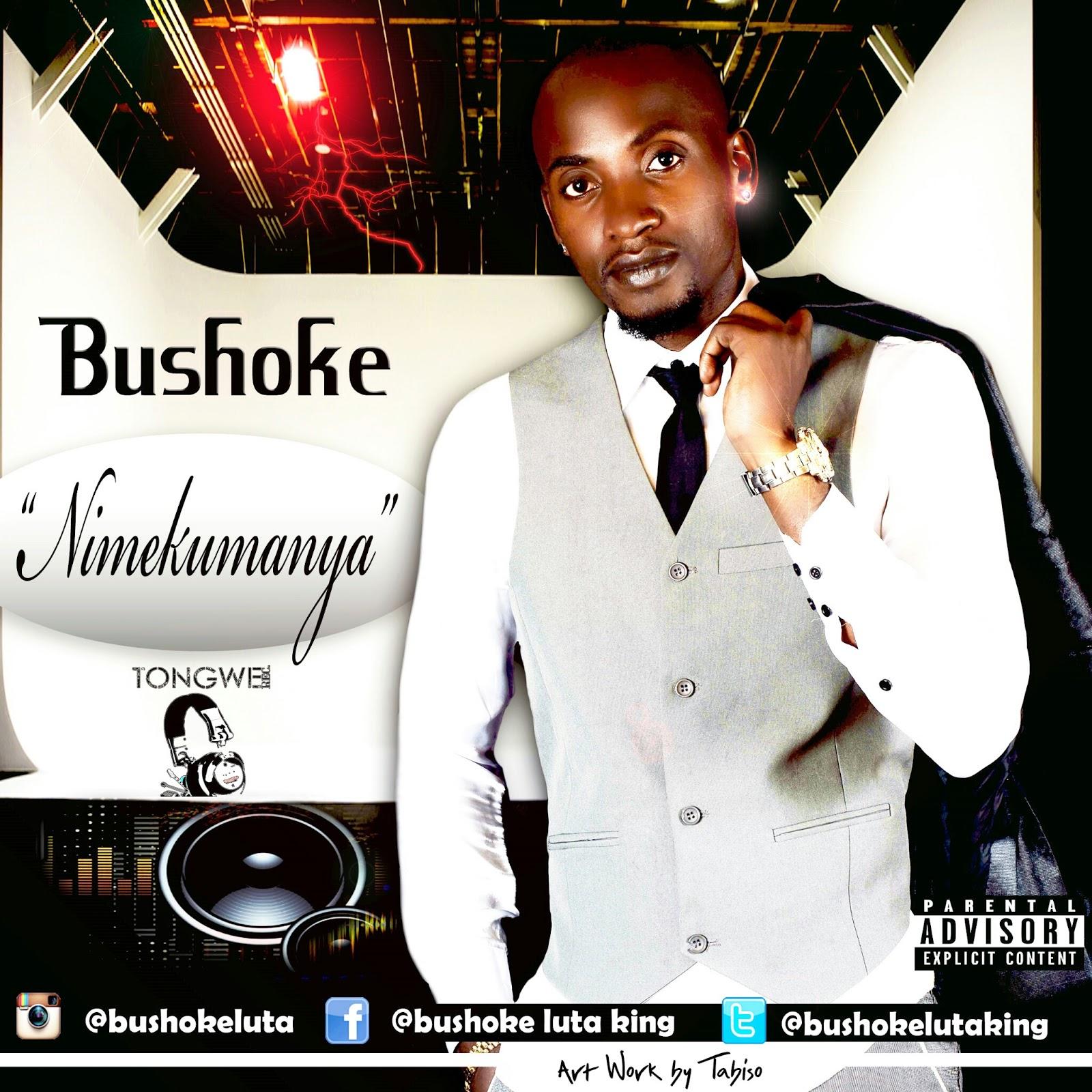 Bushoke