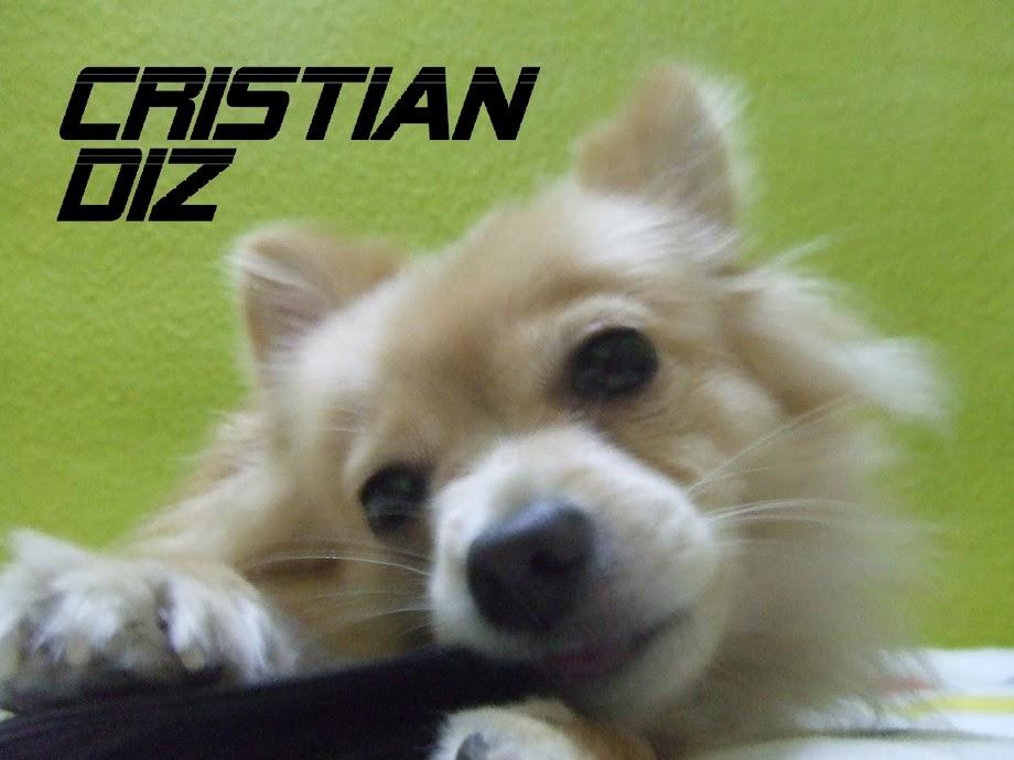 Cristian Diz