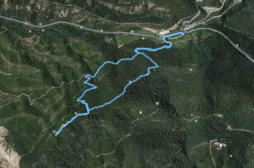 Recorregut: Carretera C-58 (Collcardús)-Turó del Ros