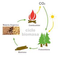 Esquema ciclo CO2 de la biomasa.