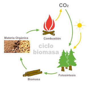 Esquema ciclo CO2 de la biomasa.