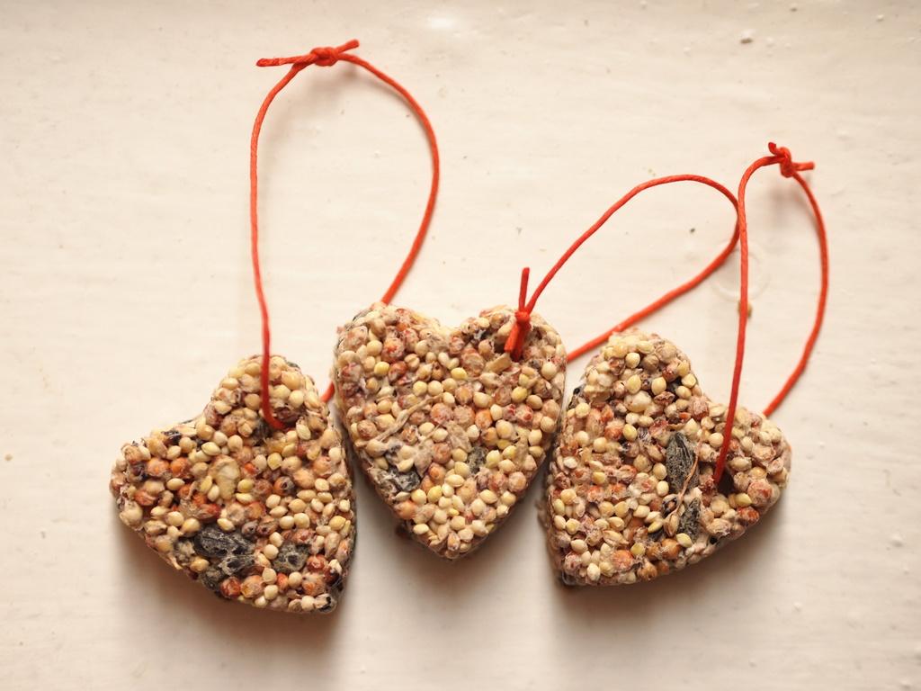 Diy birdseed ornaments pink stripey socks diy birdseed ornaments solutioingenieria Gallery