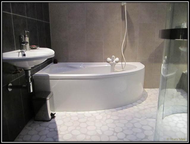 Chambre Hôte Fleur de soleil La Closerie des 3 Marottes Melun salle de bains