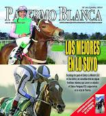 Revista Palermo Blanca