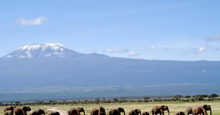 Mount Kilimanjaro Climbing Machame Route And Tanzania
