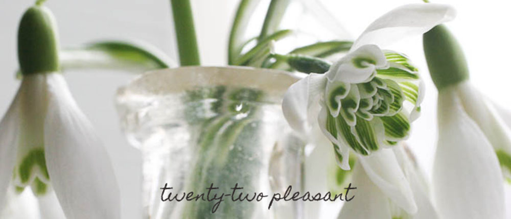 twenty-two pleasant