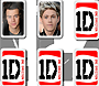 One Direction Memory Cards