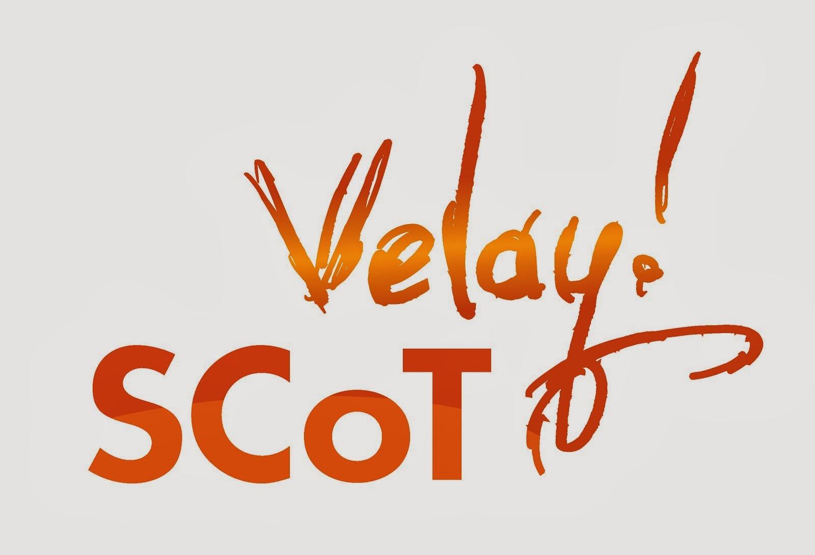 Bienvenue sur le blog du SCoT du Velay