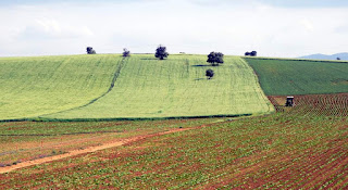 Tarım Arazilerinin Satış ve Devrinde Vergi ile Harç Alınmayacak