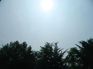 Sunny day in Seoul