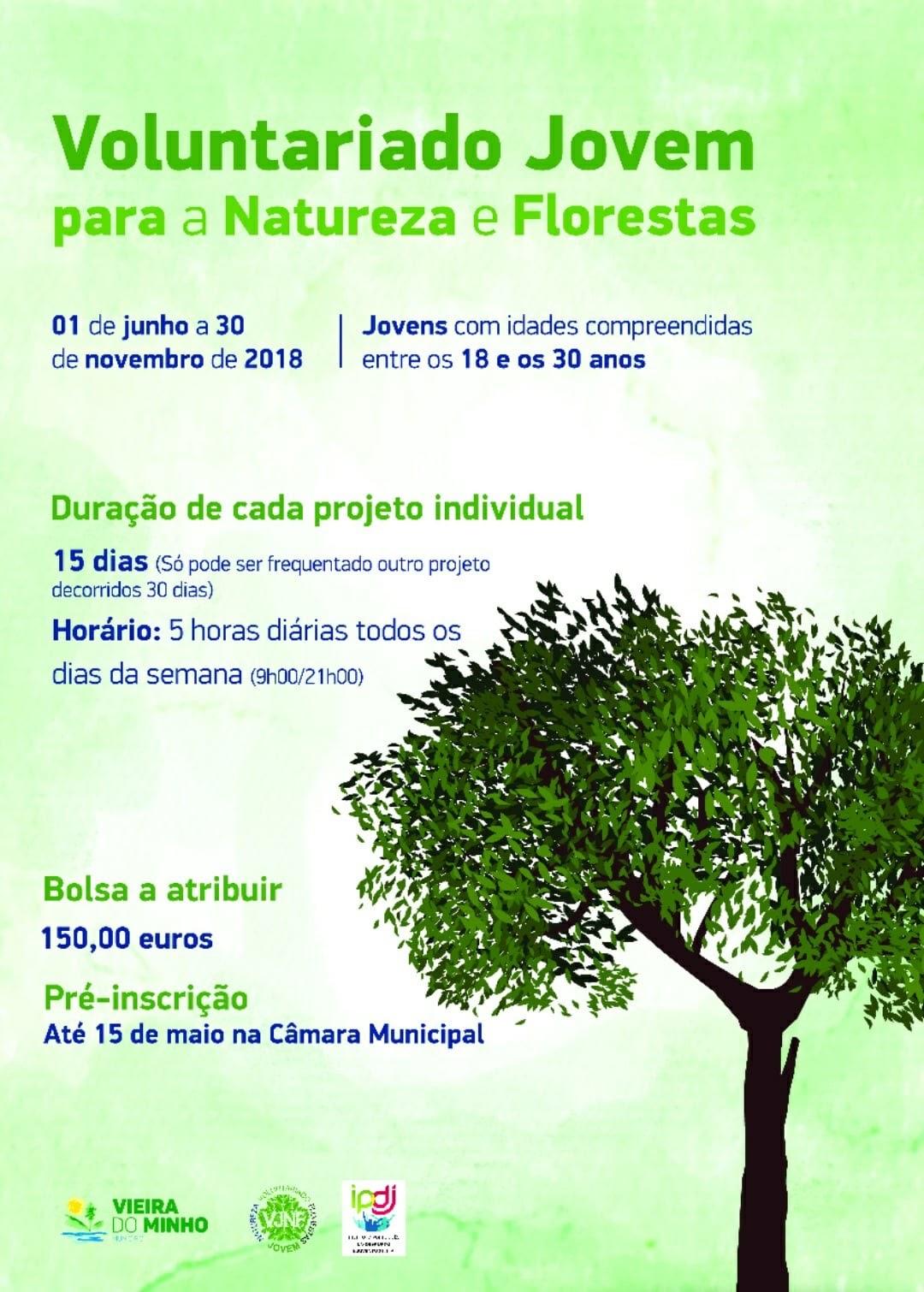 Voluntariado Jovem para a Natureza e Floresta