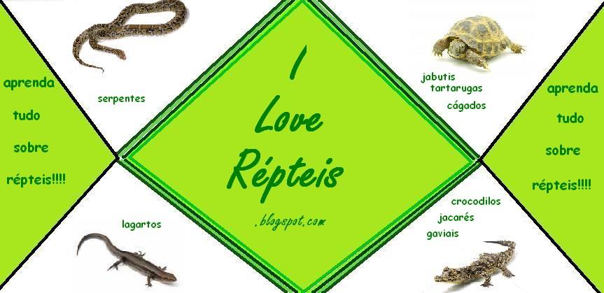 I Love Répteis