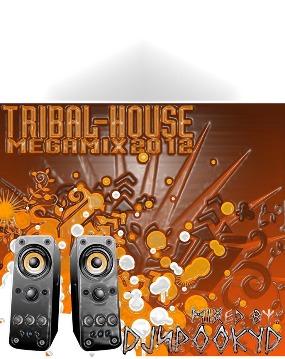 Djspookyd tribal house mix 2012 for Tribal house djs