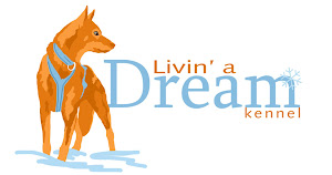 Livin' a Dream Kennel Website