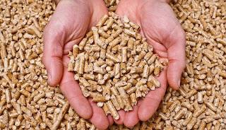 Buy pellets