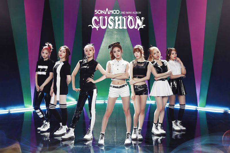 Sonamoo Cushion
