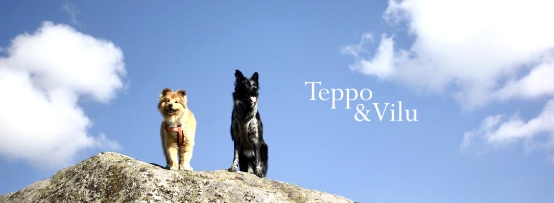 Teppo ja Vilu
