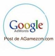 Google Adwords y Google Analytics representan un 80% de ayuda para controlar el ecommerce