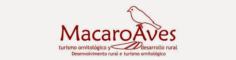 Macaroaves