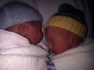 Twin boys a few hours old