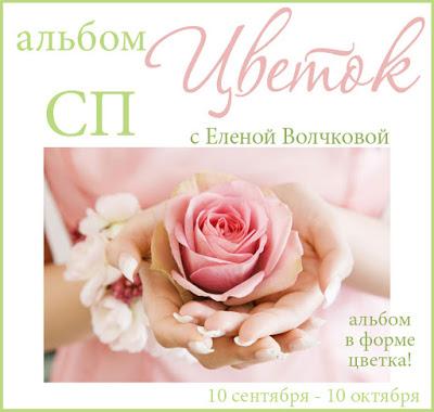 "СП ""Альбом - Цветок"""