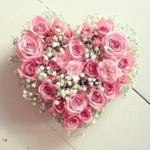 Rosas... Amizade