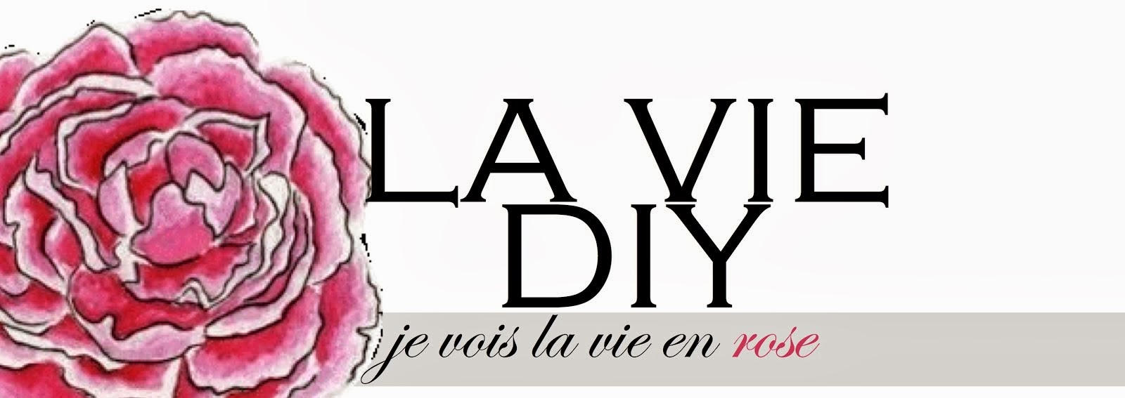 la vie DIY