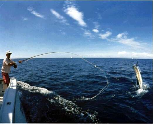 Saltwater fishing manual how to get started with deep sea for Best time to go saltwater fishing