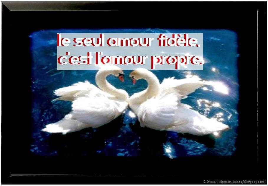 Citation fidélité amour en image