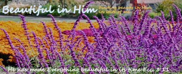 Beautiful in Him