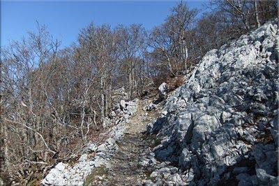 La roca va ganando terreno