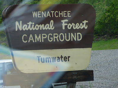 Wenatchee National Forest