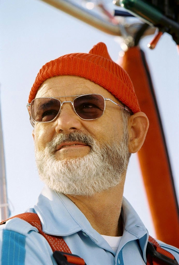 the life aquatic with steve zissou bill murray