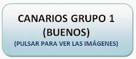 Canarios Grupo 1 (BUENOS)