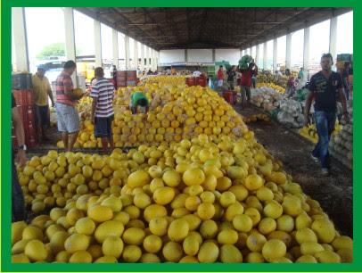 Mercado Produtor - Juazeiro Bahia