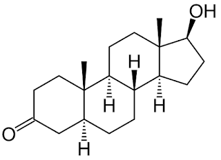 diagram showing the structure of Dihydrotestosterone