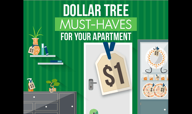 Dollar Tree Must-Haves for Your Apartment