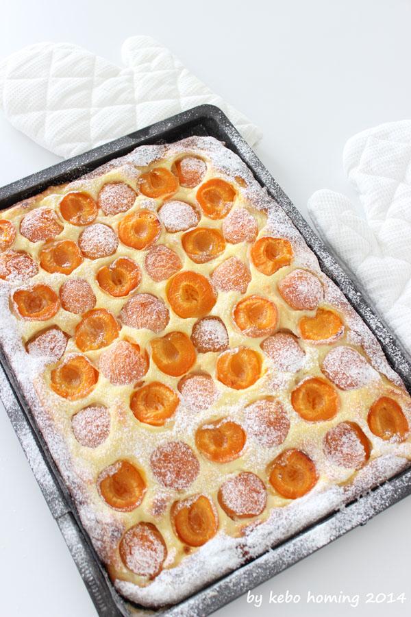 Kuchen, Aprikosen, Sommer, Ricotta, Wähe, Hefeteig, Germteig, Rezept, Südtirol