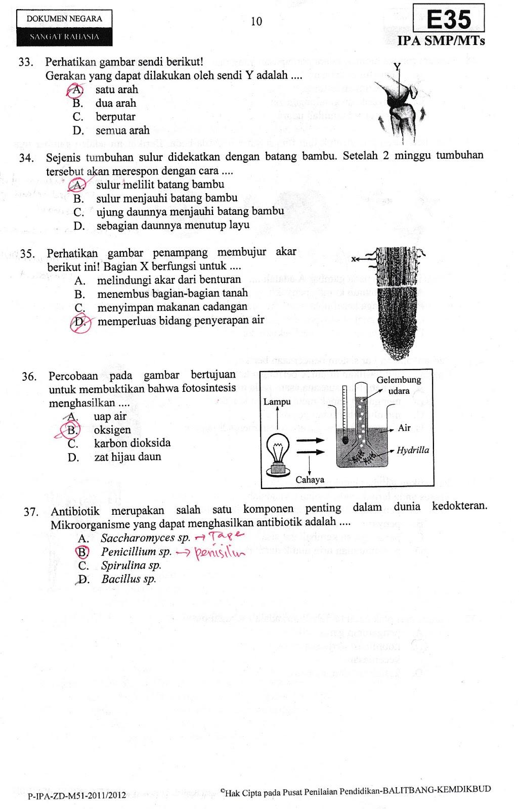 Bank soal un ipa smp - Untuk Melihat Dalam Versi Pdf Klik Link Berikut Download Soal Un Dan Pembahasan Ipa Smp 2012