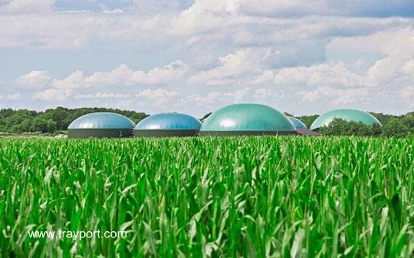 Instalaciones para usar biomasa en el campo