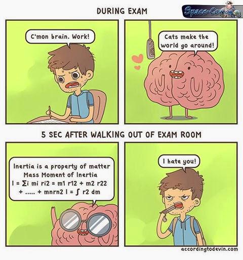 funny brain comics humor