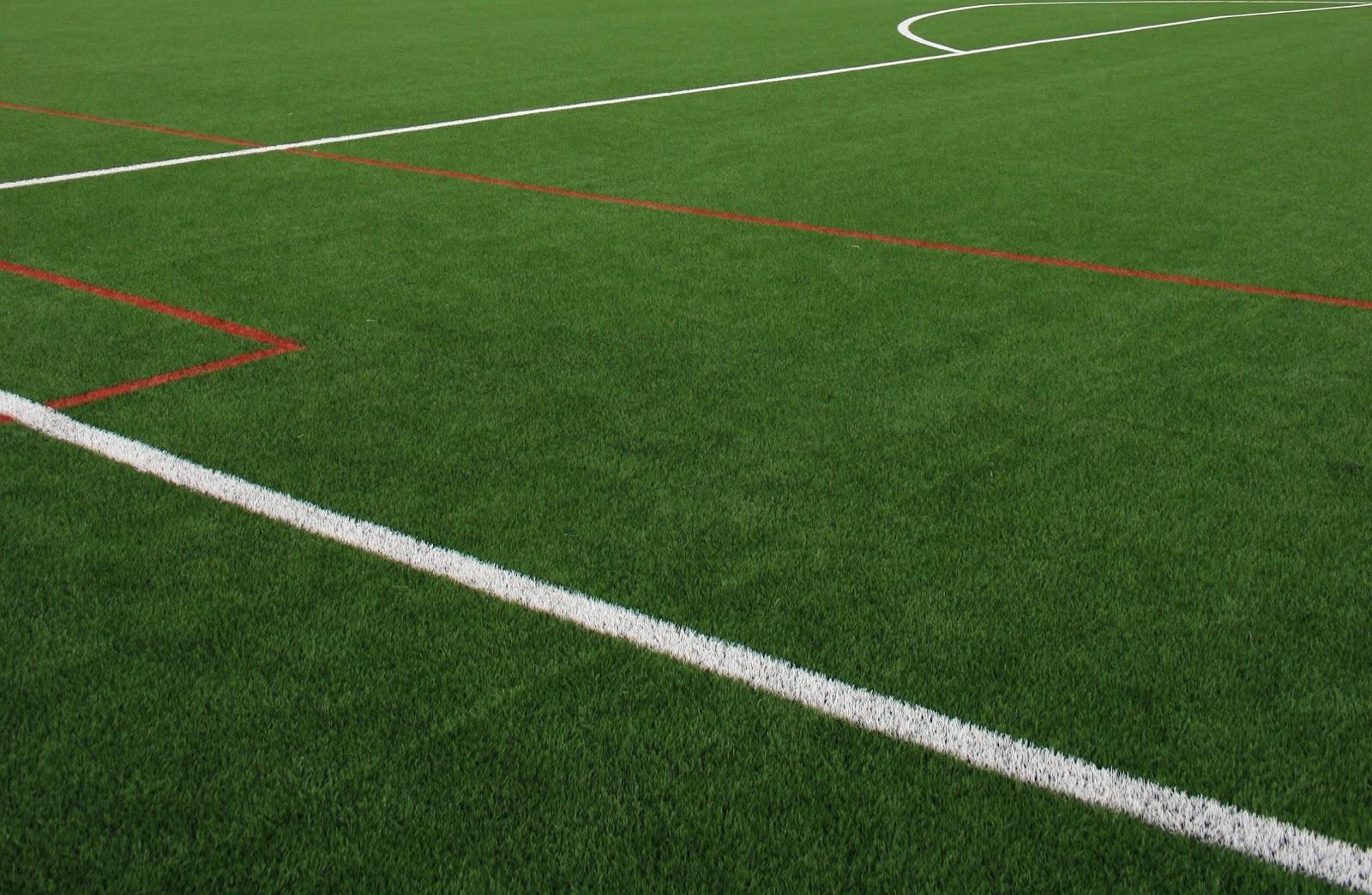 Buscar fotos campo de fútbol Fotolia